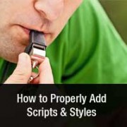 Properly Add Scripts and Styles in WordPress