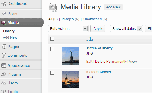 Open a file from Media Library to Edit in WordPress