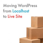 Moving WordPress from Localhost to Live Site