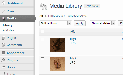 See your uploaded photos in WordPress Media Library
