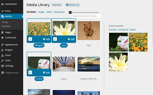 WordPress media library in grid view