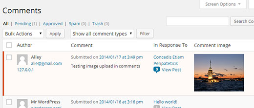 Images uploaded by users with comments