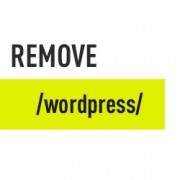 Remove WordPress from URL