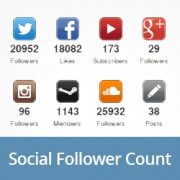 How to Display Social Follower Count in WordPress