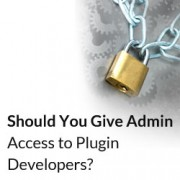 Should You Give Admin Access to Plugin Developers