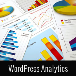 7 Best Analytics Solutions for WordPress