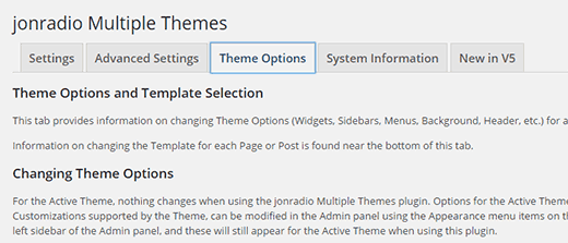 Configuring theme options