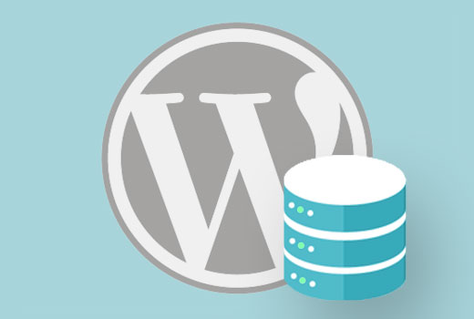 WordPress database calls