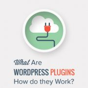 What Are WordPress Plugins? And How Do They Work?
