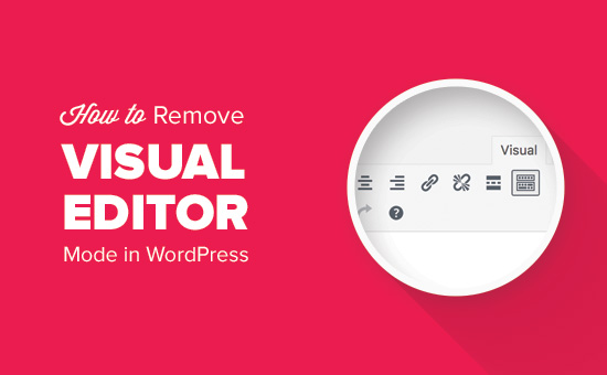 How to remove visual editor mode in WordPress