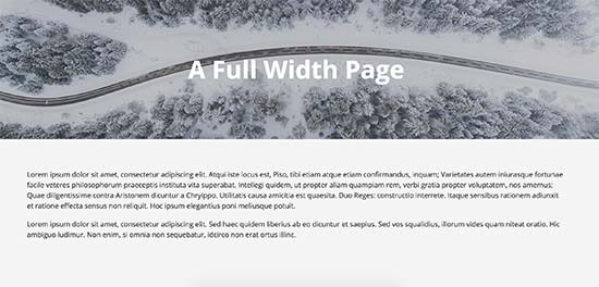 How to create a full width page in wordpress for If page template wordpress