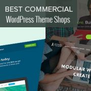 20 Best Commercial WordPress Theme Shops