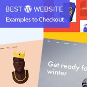21 Excellent WordPress Website Examples That You Should Check Out in 2018