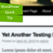 Video: Adding a Second Menu to the WordPress Twenty Ten Theme