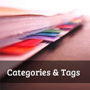 How to Add Categories and Tags for WordPress Pages