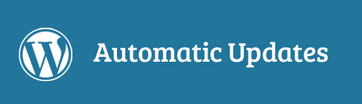 Automatic WordPress Updates