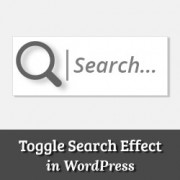 How to Add a Search Toggle Effect in WordPress
