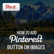 How to Add Pinterest Pin-it Button Over Your Images in WordPress