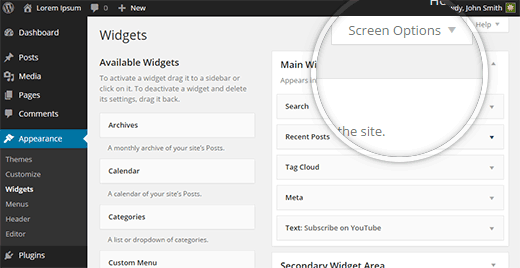 Screen options menu on the widgets screen