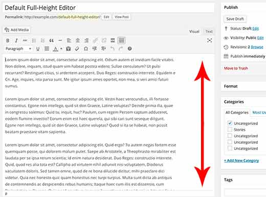 Default full height editor in WordPress