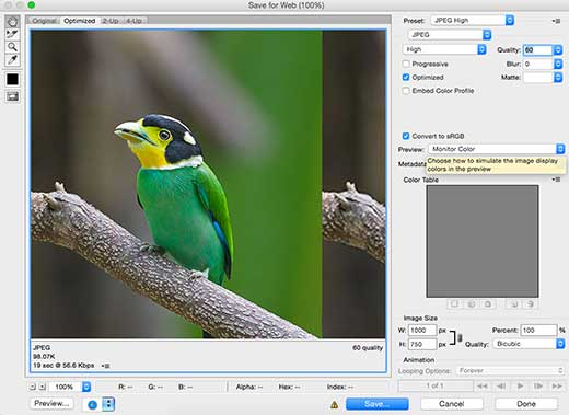 Saving images for the web in Photoshop