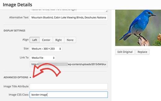 Thêm lớp CSS vào hình ảnh trong WordPress