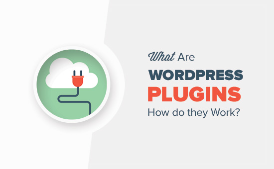 What Are WordPress Plugins? How Do They Work?