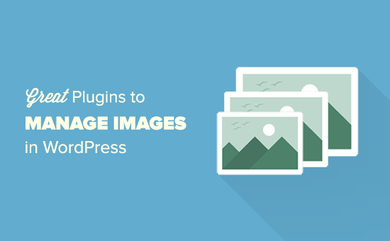 WordPress plugins to manage images