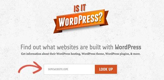 البحث عن موقع على شبكة الإنترنت IsItWP