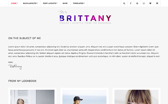 26 Best Minimalist WordPress Themes for Writers (2017)