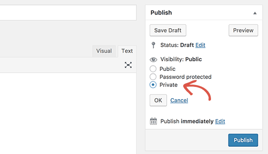 Private post option in WordPress post edit screen