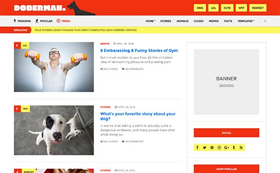 How to Create a BuzzFeed Like Website Using WordPress