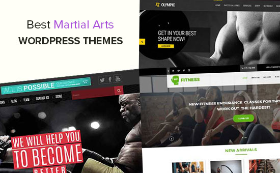 Best Martial Arts WordPress Themes