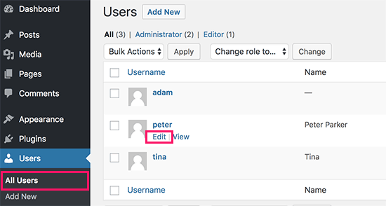 Editing a user account in WordPress