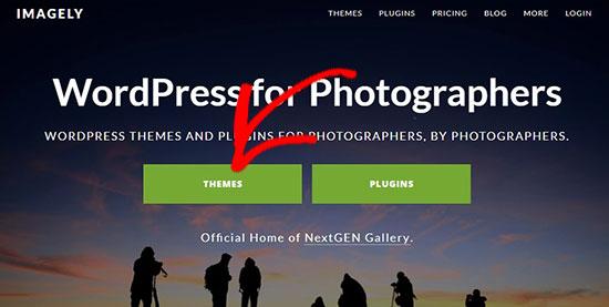 Imagely website