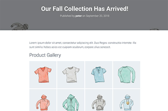 WooCommerce product gallery preview