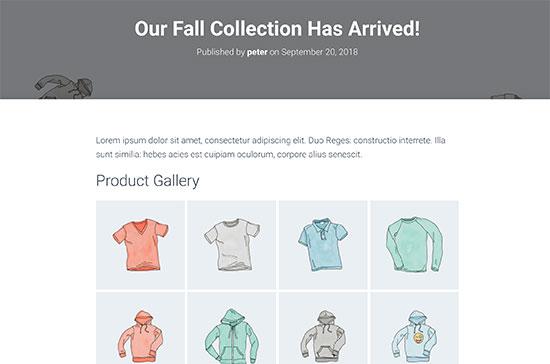 Voorbeeld van de WooCommerce-productgalerij