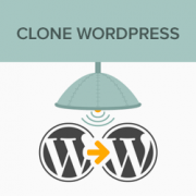 How to Clone a WordPress Site in 7 Easy Steps