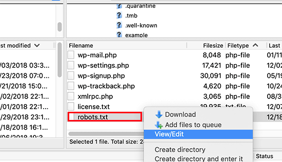Editing WordPress robots.txt file using FTP