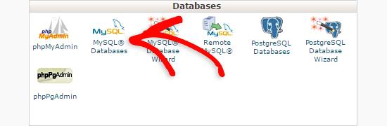 cpanel의 데이터베이스 섹션