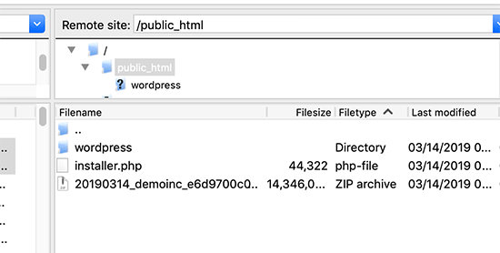 Upload Duplicator files to the root folder of your website