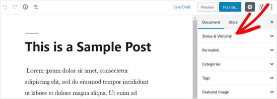 Tùy chọn trạng thái và hiển thị trong WordPress Post Editor