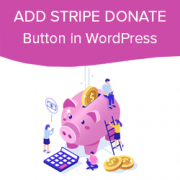 How to Add Stripe Donate Button in WordPress (with Recurring Option)