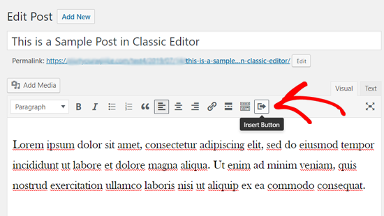 Insert Button Icon in Classic WordPress Editor