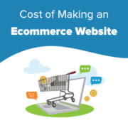 How Much Do Ecommerce Websites Cost in 2020? (Real Numbers)