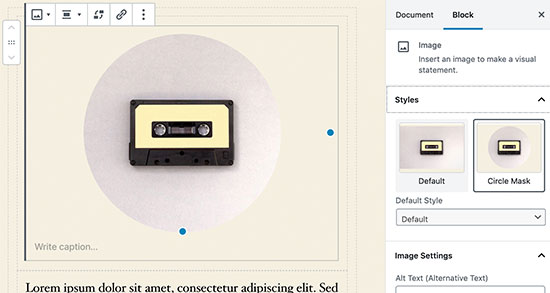 Image block settings in WordPress 5.3