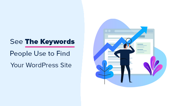 View the keywords your website ranks for