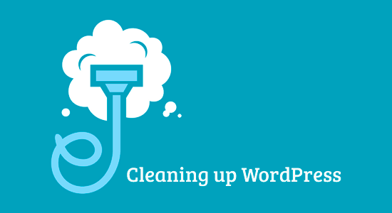 Cleanup WordPress