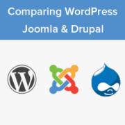 WordPress vs Joomla vs Drupal – Which One is Better?